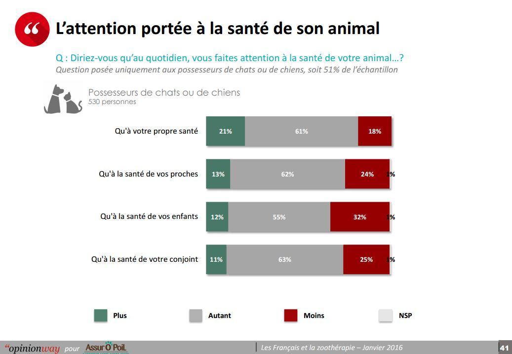 Zoothérapie : enquête Assur O'Poil